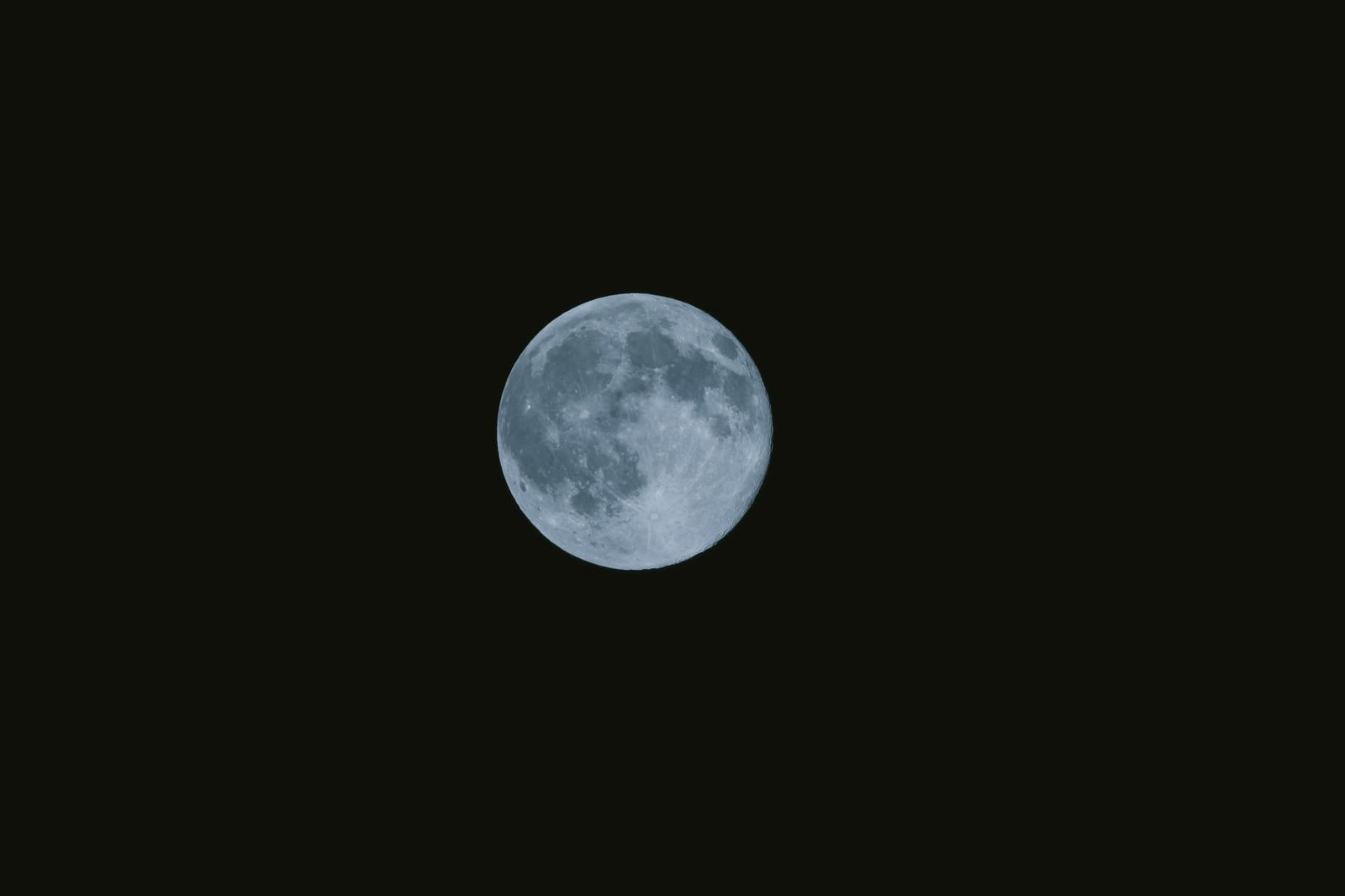 月とすっぽん
